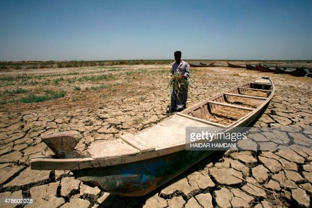 An Iraqi man walks past a canoe siting on dry cracked earth in the Chibayish marshes near the southern Iraqi city of Nasiriyah on June 25 2015 Marsh...