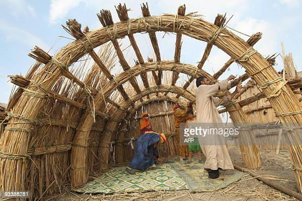 An Iraqi marsh Arab family construct a reed house in the Hor or marshes some 130 km southwest of the southern city of Basra on November 18 2009 The...