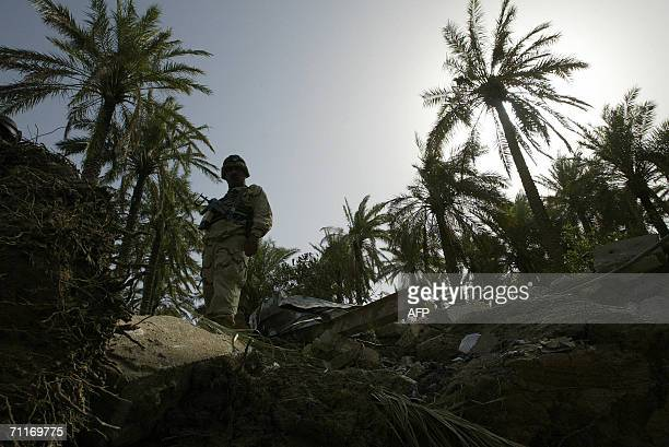 An Iraqi soldier looks down into a crater at the scene of the recent airstrike against alQaeda leader in Iraq Abu Musab alZarqawi in an isolated palm...