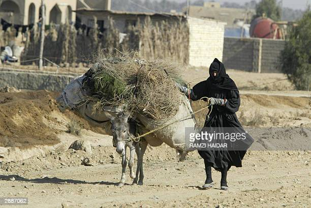 An Iraqi woman leads her heavily laden donkey through a huge garbage dump in Baghdad's predominantly Shiite neighborhood of Sadr City 21 January 2004...
