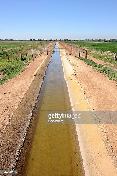 An irrigation channel runs through fields of canola in Point Wilson outside of Melbourne Australia on Tuesday Dec 15 2009 Canola production in...