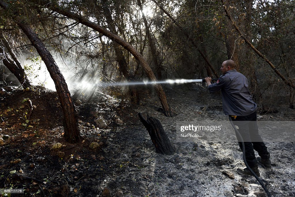 An Israeli firefighter in a forest hit by a massive forest fire in the Northern city of Haifa, Israel on November 25, 2016. The massive fire in the city of Haifa lead to the evacuation of dozens of thousands of city residents and is part of a lrage wave of forest fires errupted all over Israel during the last days.