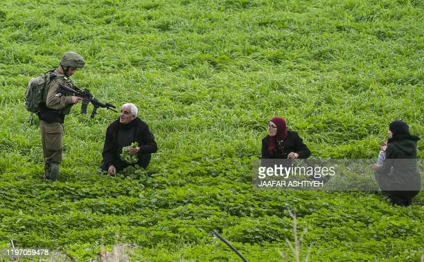 An Israeli soldier checks the identification documents of Palestinian farmers in a field near alHamra checkpoint in the Jordan Valley in the occupied...