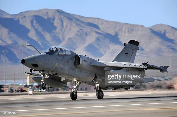 an italian air force amx fighter landing at nellis air force base in nevada. - italian military stock pictures, royalty-free photos & images