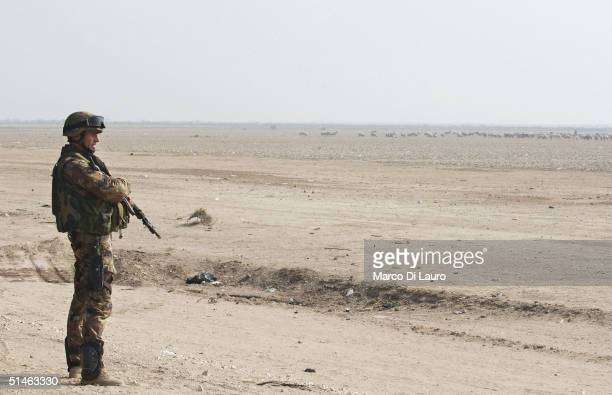 An Italian marine from the Italian Joint Task Force Iraq, San Marco Regiment, looks out over the desert as he stands at a check point on the Tampa...