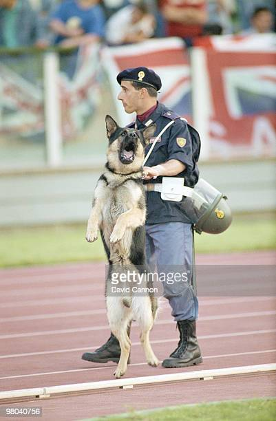 An Italian riot police officer and his guard dog patrol English football fans during Group F match of the 1990 FIFA World Cup on 11 June 1990 between...