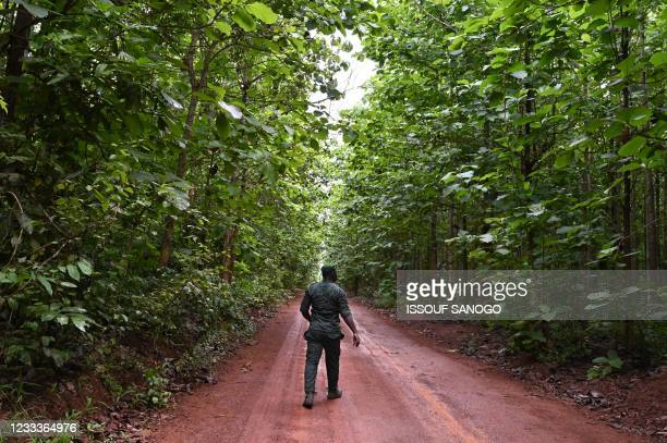 An Ivorian Forest guard officer walks in the classified forest of Tene near Oumé, south western region in Ivory Coast, on May 19, 2021. -...