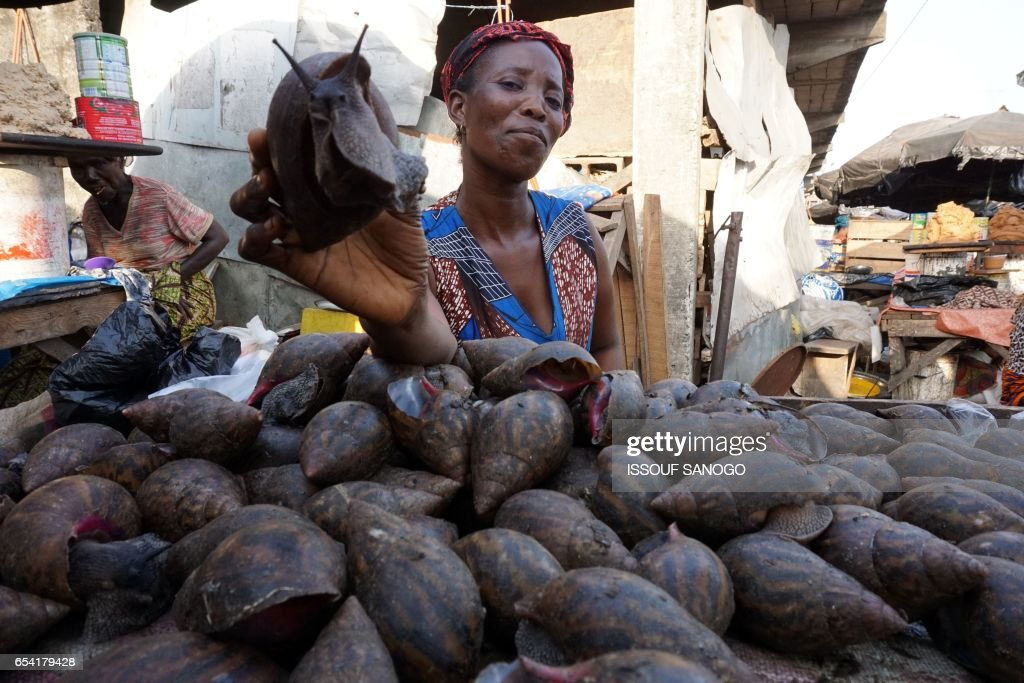 An Ivorian vendor shows a snail at a market in Abidjan's district of Adjame on March 16, 2017. /