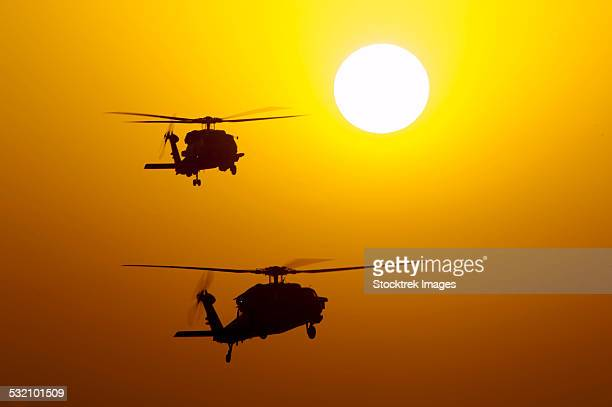 An MH-60S Knighthawk and MH-60R Sea Hawk at sunset.