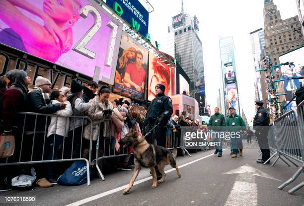 An NYPD officer with a K9 patrols the crowd gathered for the New Year's celebration December 31 2018 in Times Square in New York