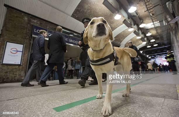 An officer from the British Transport Police patrols with a sniffer dog among passengers as part of Counter Terrorism Awareness Week at London Bridge...