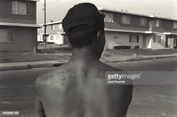 An OG or original gangster member of the Grape Street Crips shows off his tattoo The Grape Street Watts Crips are a mostly African American street...