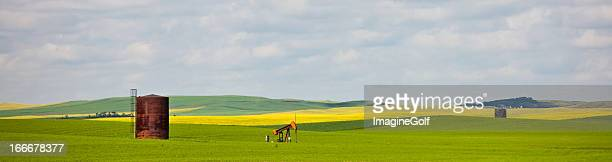 an oil pump in the middle of a lush field - calgary alberta stock pictures, royalty-free photos & images