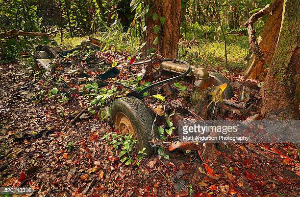 An old car / vehicle reclaimed by nature in remote Kauai Hawaii Forest
