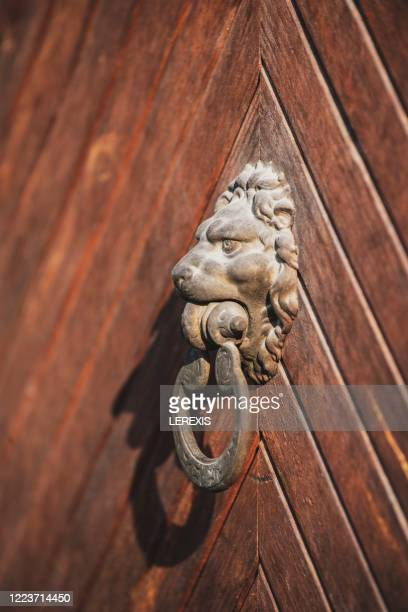 an old door with a lion's head on it - third place stock pictures, royalty-free photos & images