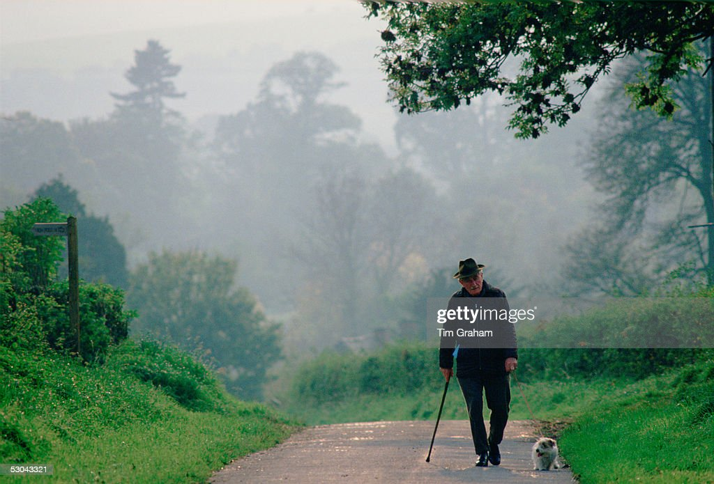 Old Man In Country Lane with Dog, England : News Photo