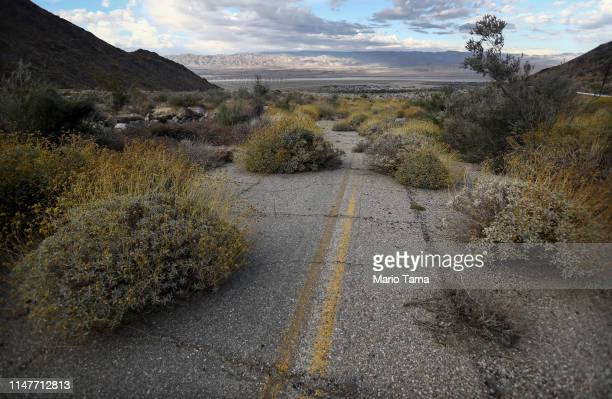 An old road is partially overtaken by desert plants in the Coachella Valley on May 6 2019 in Palm Springs California California's Fourth Climate...
