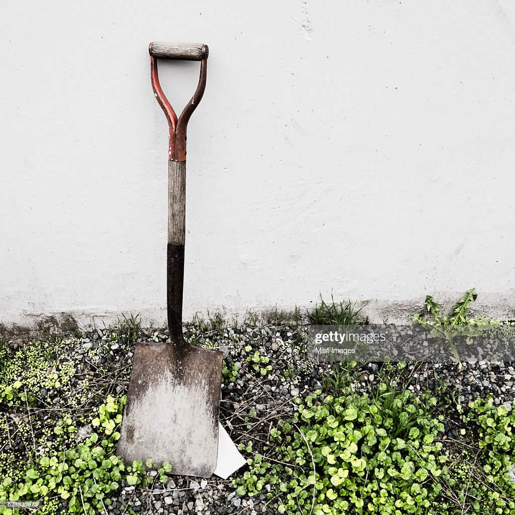 An old shovel propped against a wall. : Stock Photo