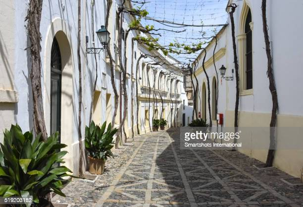 an old street in jerez de la frontera, andalusia, spain - jerez de la frontera stock pictures, royalty-free photos & images