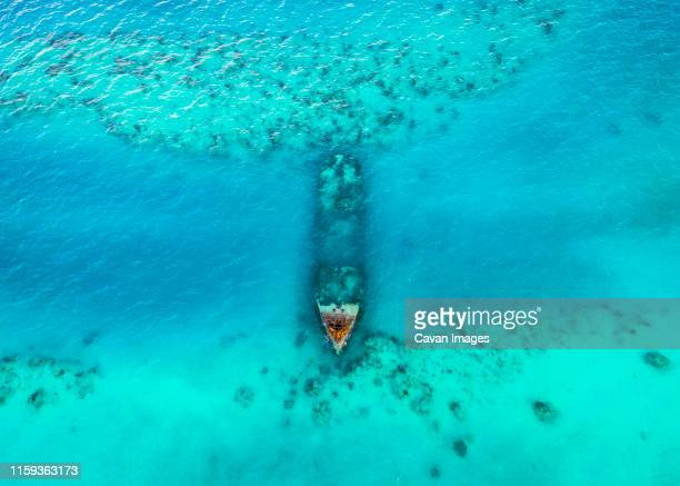 an old sunken ship underwater in bermuda - bermuda stock pictures, royalty-free photos & images