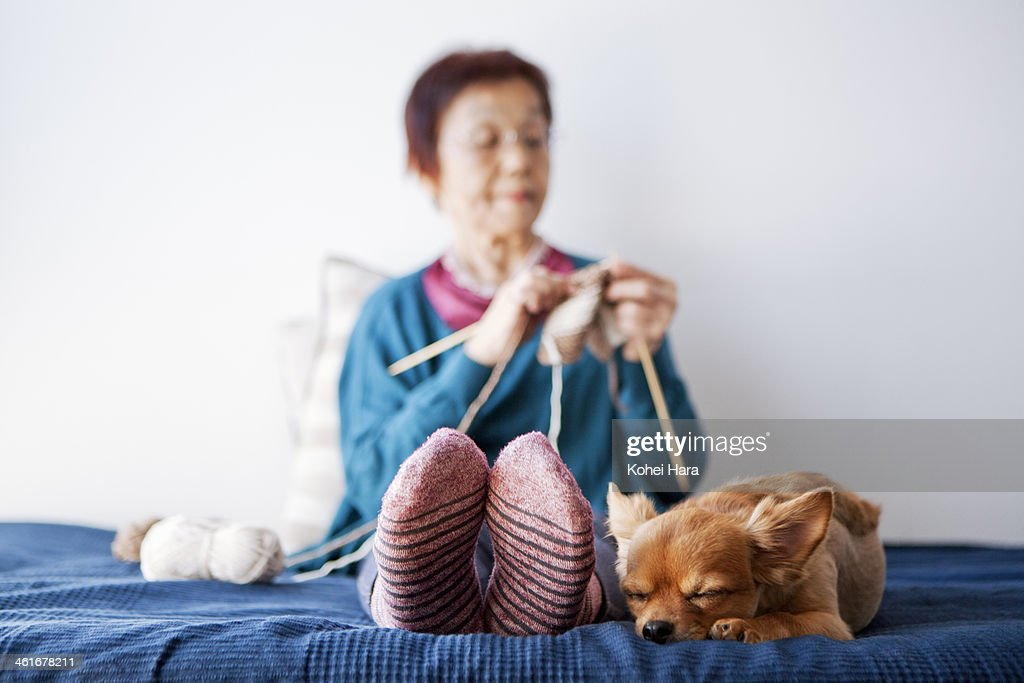 An old woman and a dog relaxed at home : Stock Photo