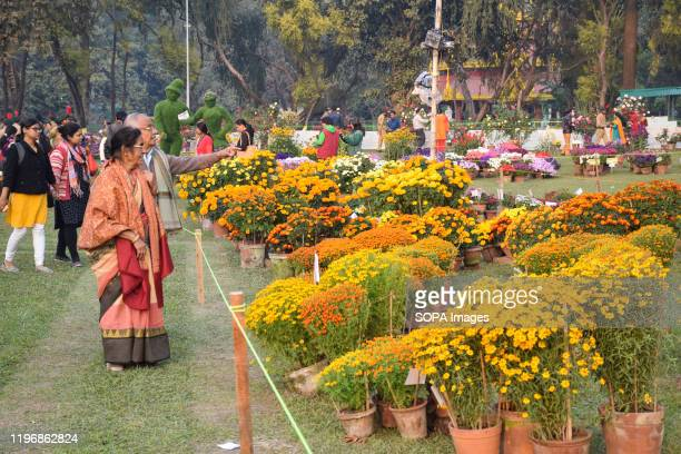 An old woman looks at the flowers during the fair. Kolkata flower show was organized by West Bengal forest department at Eden garden. This is the...