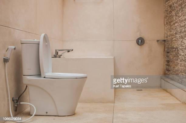 an old-fashioned design of a modern bathroom - ビデ ストックフォトと画像