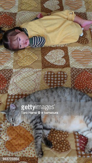 An Oneyearold Girl And A Big Cat Sleeping In The Living Room ...