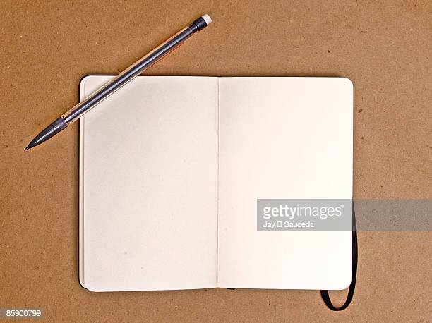 An open and empty journal
