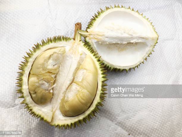 an opened durian fruit - durian stock pictures, royalty-free photos & images