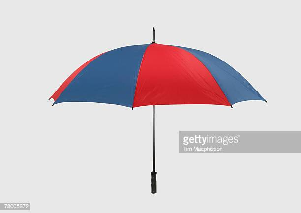 An opened umbrella.