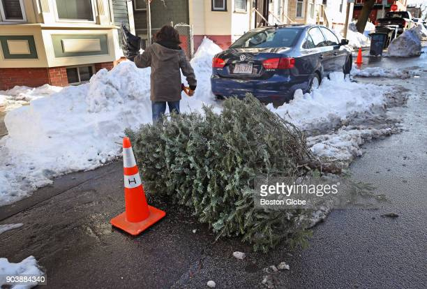 An orange cone and a Christmas tree serve as a 'space saver' for a parking spot on O Street in South Boston on Jan 9 2018 Boston has enforced a...
