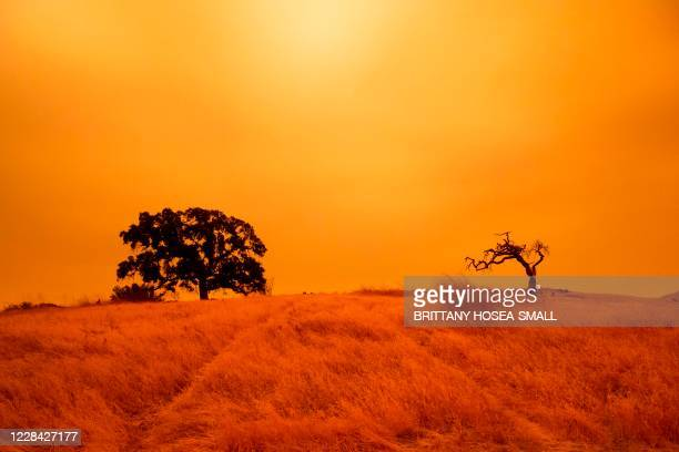 An orange sky filled with wildfire smoke hangs above hiking trails at the Limeridge Open Space in Concord, California, on September 9, 2020. -...
