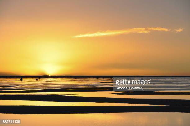 an orange sunset sky reflects in the heavy water of the uyuni salt flats in bolivian altiplano. - rhonda klevansky ストックフォトと画像