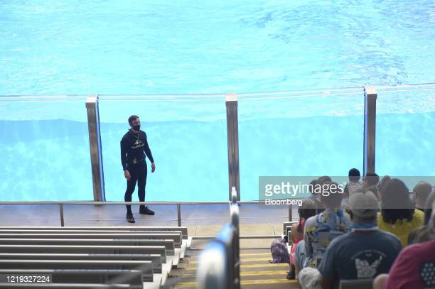 An orca trainer wears a protective mask while talking to the audience during a show at the SeaWorld amusement park in Orlando, Florida, U.S., on...