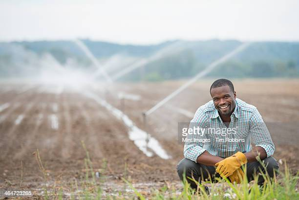 An organic vegetable farm,with water sprinklers irrigating the fields. A man in working clothes.