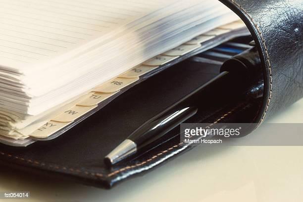 An organizer and pen