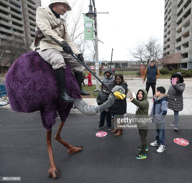 TORONTO OH NOVEMBER 26 An ostrich draw wonder from the crowds during The Weston Village Santa Parade is in its 38th year and attracts crowd along the...