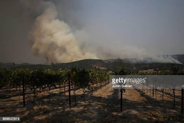 An out of control wildfire approaches Gundlach Bundschu winery on October 9 2017 in Sonoma California Ten people have died in wildfires that have...