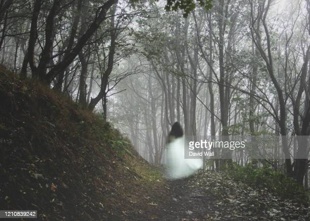 an out of focus, blurred ghostly woman wearing a white dress, running away from the camera. on a misty autumn day in a forest. - white dress stock pictures, royalty-free photos & images