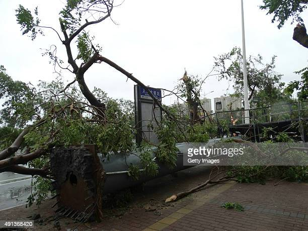 An outdoor billboard is shown blown down by Typhoon Mujigae on October 4 2015 in Zhanjiang China Typhoon Mujigae the 22nd typhoon this year made...