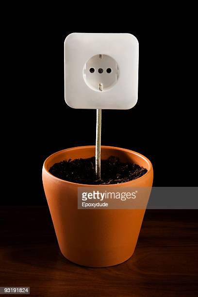 An outlet in dirt in a flower pot