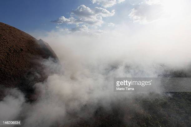 An oven burns illegally harvested Amazon rainforest wood as it is turned into charcoal on June 8 2012 in Rondon do Para Brazil According to a recent...