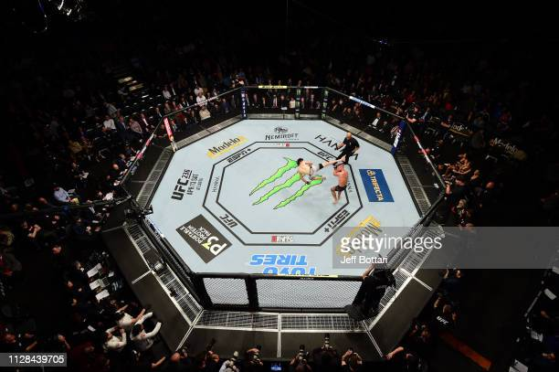 An overhead view of Jeremy Stephens versus Zabit Magomedsharipov of Russia in their featherweight bout during the UFC 235 event at TMobile Arena on...