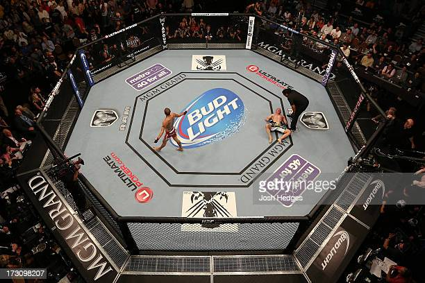An overhead view of the Octagon as Cub Swanson reacts after knocking out Dennis Siver in their featherweight fight during the UFC 162 event inside...