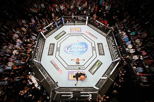 UFC 173: Barao V Dillashaw Wall Art