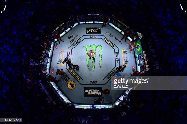 An overhead view of the octagon during the intoduction of Jon Jones and Thiago Santos of Brazil during the UFC 239 event at T-Mobile Arena on July 6,...