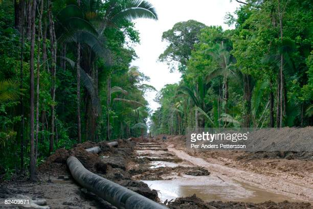An overview of a gas pipeline being constructed in the Amazon rainforest on June 4 2008 outside Manaus Brazil The 672kilometer UrucuManaus gas...