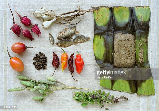 An overview of key ingredients in traditional Naga cooking from top left roselle flower garlic salted fish fermented soybean paste two local green...