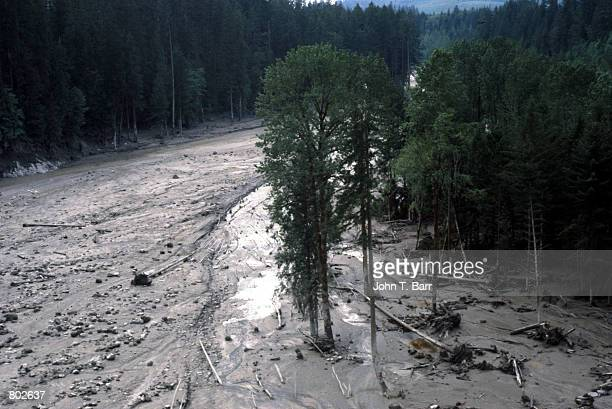 An overview of the aftermath of Mount St Helens eruption shows the devastation May 23 1980 in Mount St Helens National Volcanic Monument WA Twenty...